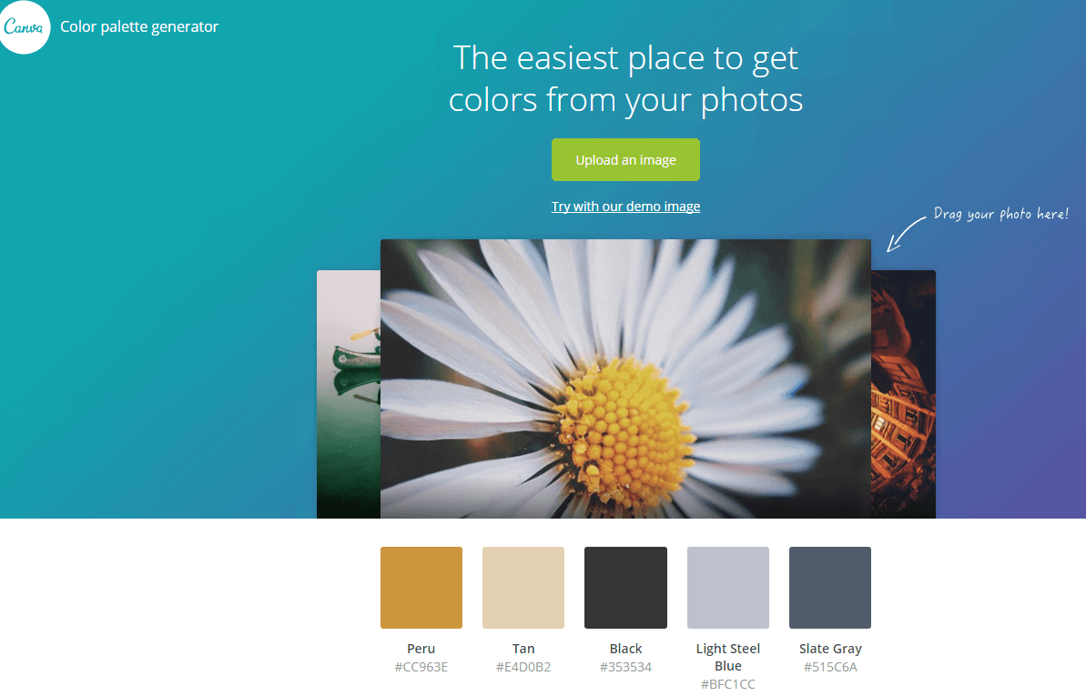 Canva Color Generator